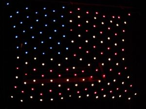 Flag Net Light