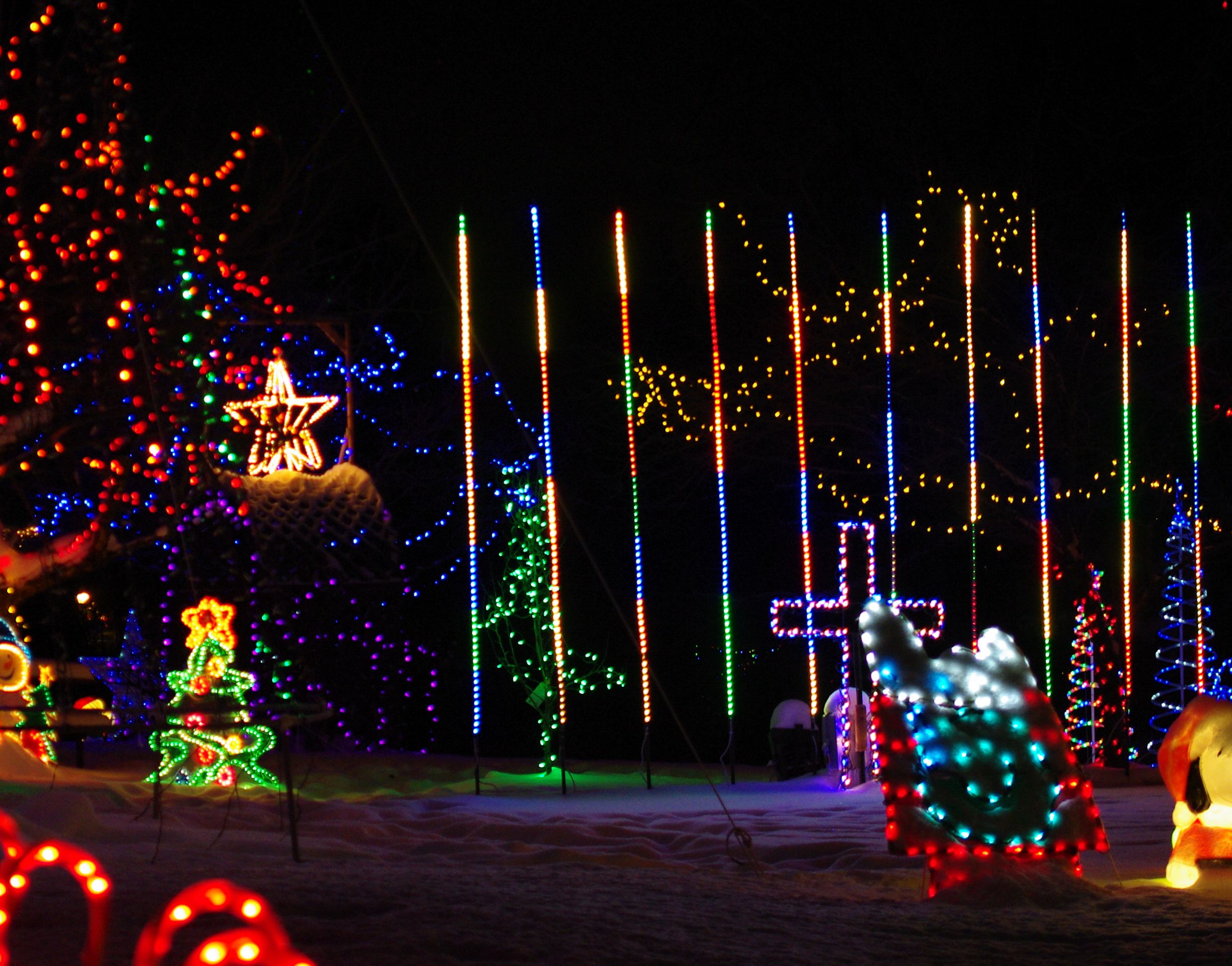 laser lighting large home lights light xmas larkspur the tree at show co illumination christmas